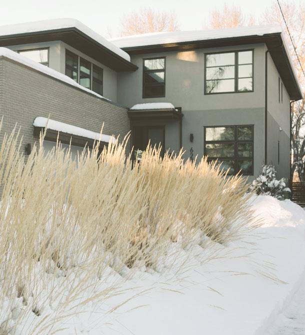 Schnee_30.01._lang